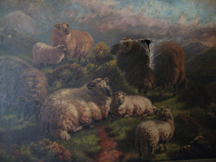 Sheep with Tear Before Restoration